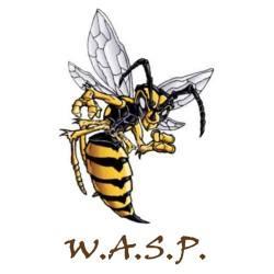 WASP-2013